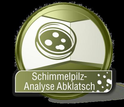 Schimmelpilz-Analyse Abklatsch